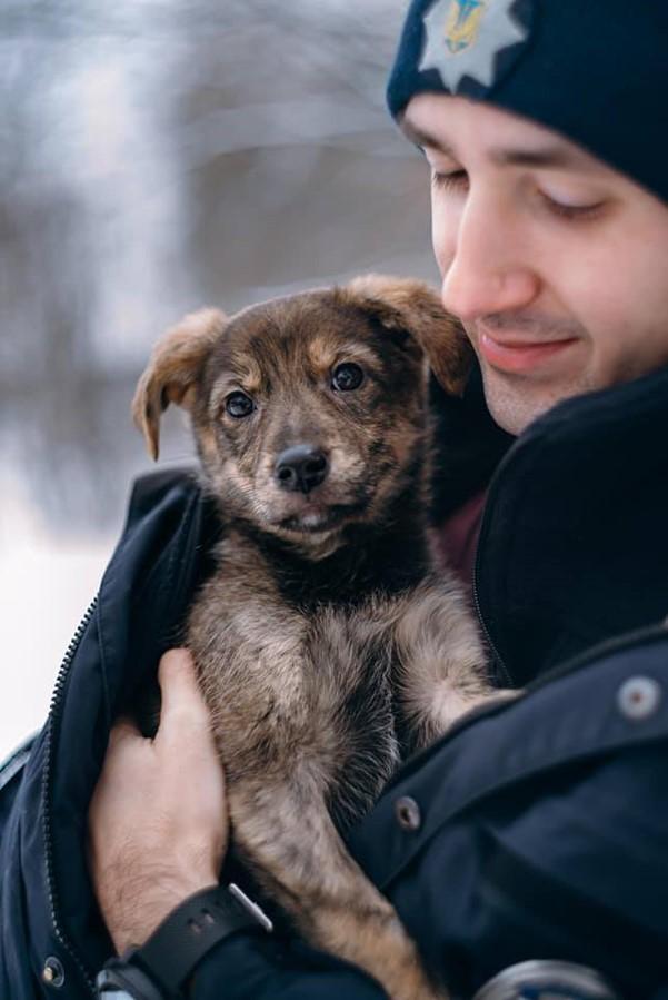 Ukraine officer and dog