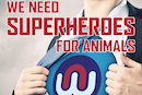 Can you be a superhero?